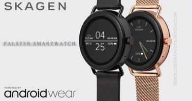 Scheda Tecnica Skagen Falster Smartwatch