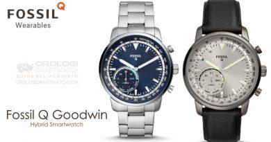 Scheda Tecnica Fossil Q Goodwin Hybrid Smartwatch